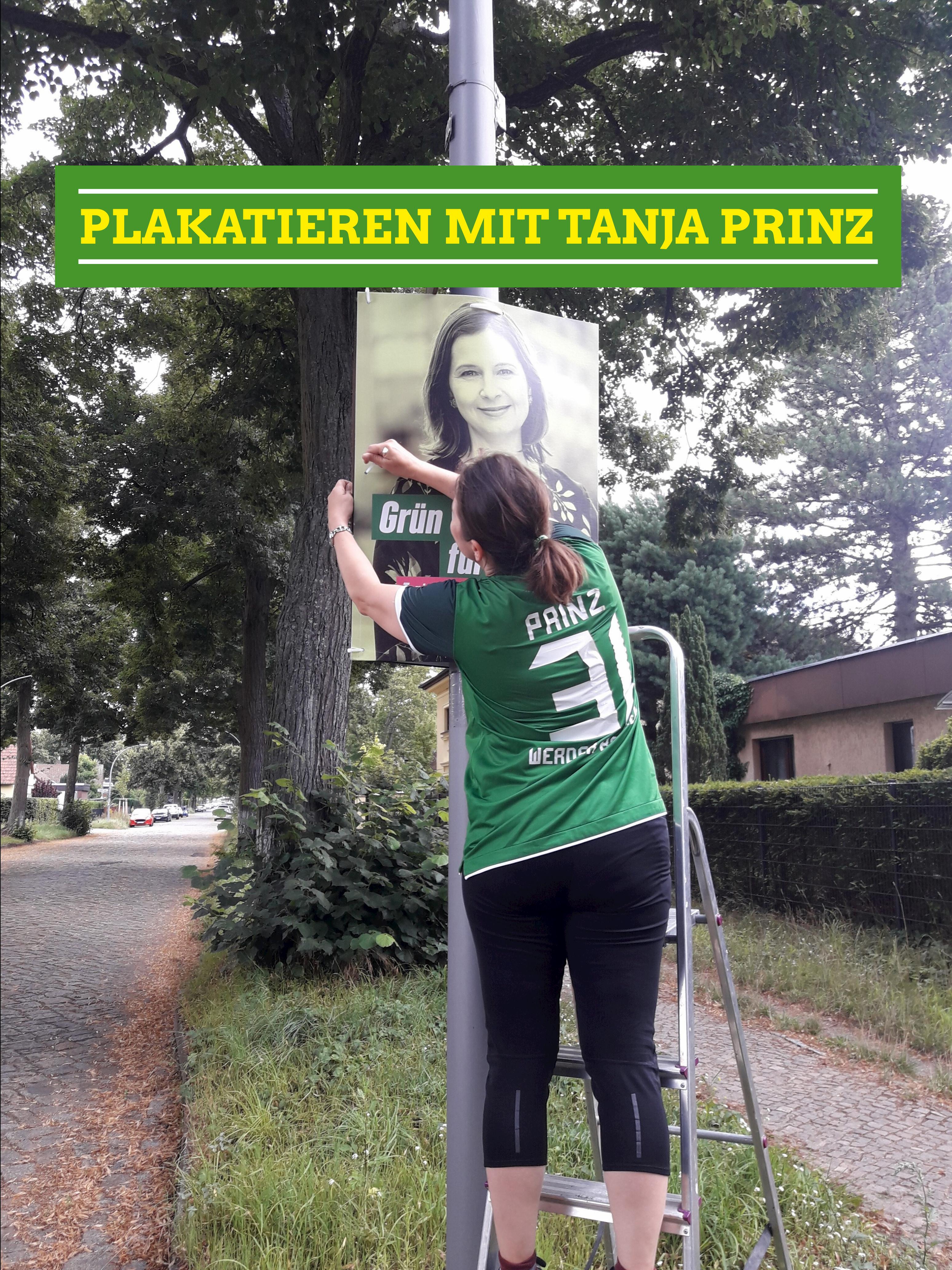 Plakatieren mit Tanja Prinz